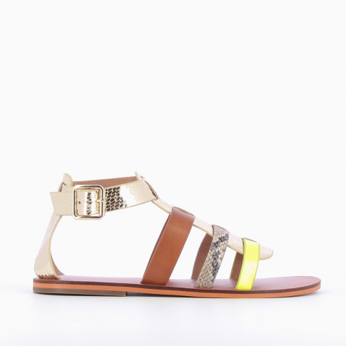 Multicoloured gladiators with gold central strap
