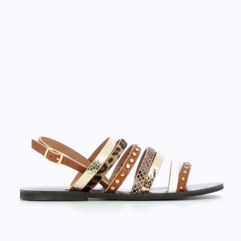 Camel multi-material gladiators